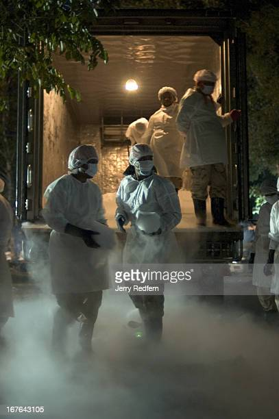 Thai volunteers unload dry ice from a delivery truck at Wat Bang Muang near Khao Lak The ice will be used to slow the decomposition of the bodies of...