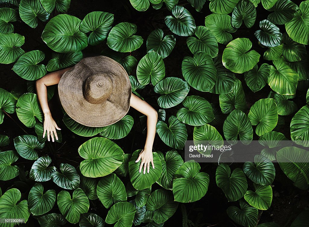 Thai woman with tropical leaves : Stock-Foto