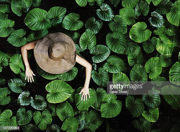 thai woman with tropical leaves - stagno acqua stagnante foto e immagini stock