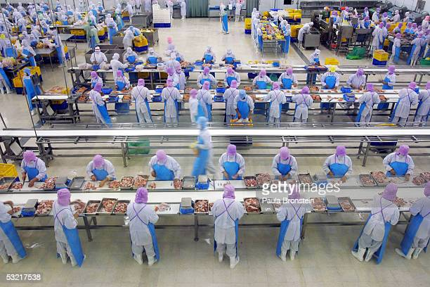Thai workers separate cut up chicken parts at the Thai Poultry Group chicken processing and slaughtering factory July 9 2005 in Chonburi Thailand The...