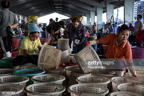 Thai workers sort fresh fish after it was unloaded from a fishing boat at the port in Songkhla on February 1 2016 Around 100 people have been...