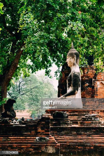 Thailand, Ayutthaya, Buddha statue surrounded by brick pagodes at Wat Mahathat