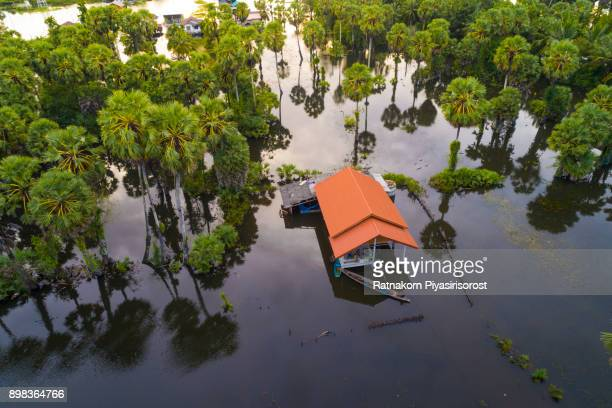 thailand floods, natural disaster, aerial photograph - flooding stock photos and pictures