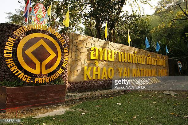 Thailand Khao Yai National Park Placed On Unesco'S World Heritage List In Thailand In February 2008 In 2005 UNESCO placed the Khao Yai National Park...