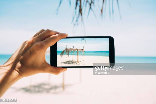 thailand, koh lanta, virgin paradise beach, woman taking photo with cell phone - capturing an image stock pictures, royalty-free photos & images