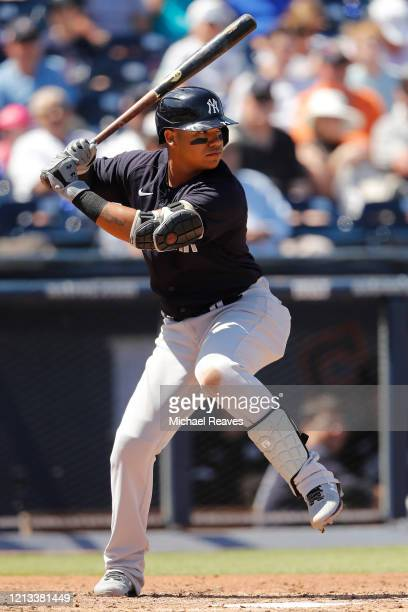 Thairo Estrada of the New York Yankees at bat against the Washington Nationals during a Grapefruit League spring training game at FITTEAM Ballpark of...