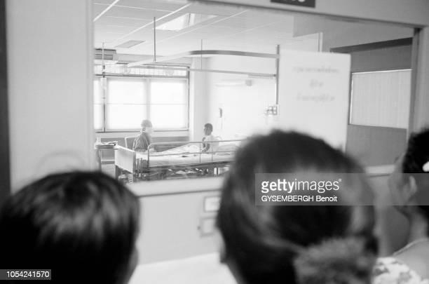 Thaïlande, octobre 2005 --- En Asie du Sud-Est, depuis janvier 2004, une épizootie de grippe aviaire due au virus H5N1 a particulièrement touché les...