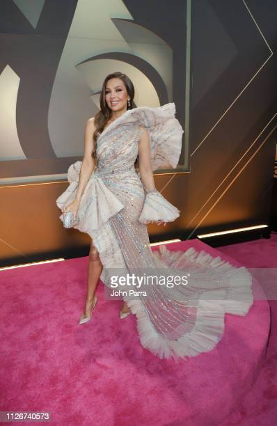 Thalia arrives at Univision's 31st Edition Of Premio Lo Nuestro A La Musica Latina Pink Carpet at American Airlines Arena on February 21 2019 in...