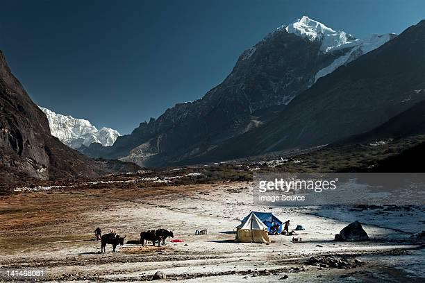 Thangsing, Himalayan Kanchenjungs Region, Sikkim, India