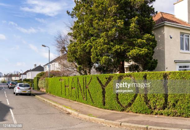 thank you cut into hedge during coronavirus pandemic - free stock pictures, royalty-free photos & images
