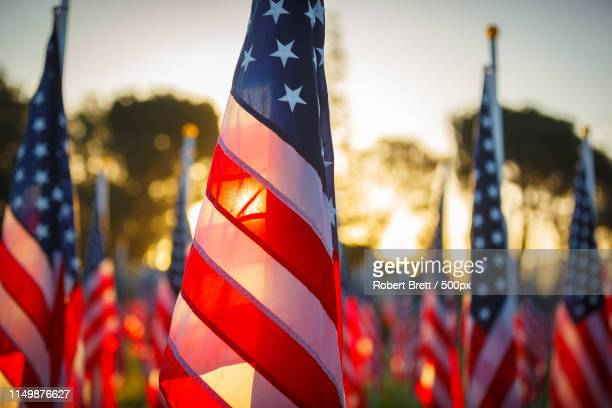 thank you, veterans - veterans day stock photos and pictures