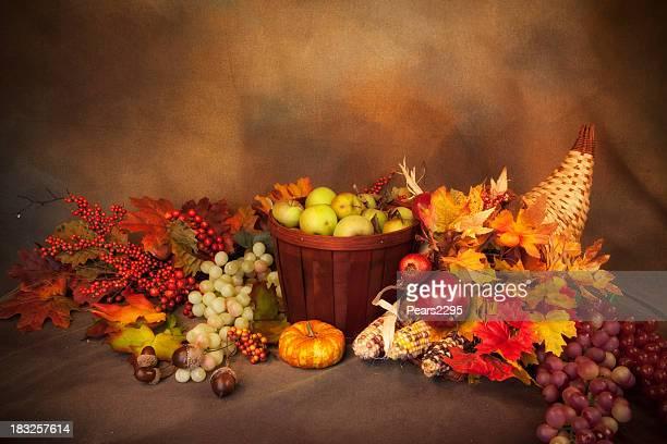感謝祭のお手配 - 豊穣の角 ストックフォトと画像