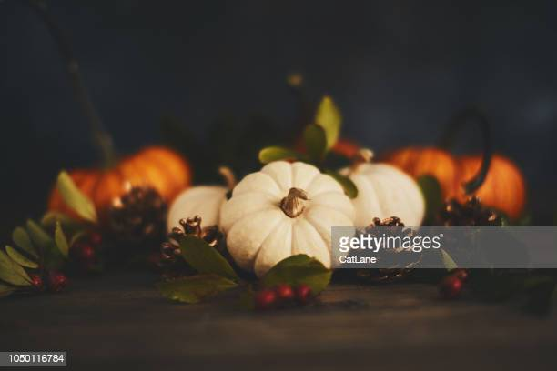 thanksgiving arrangement with pumpkin variety and berries - thanksgiving background stock photos and pictures