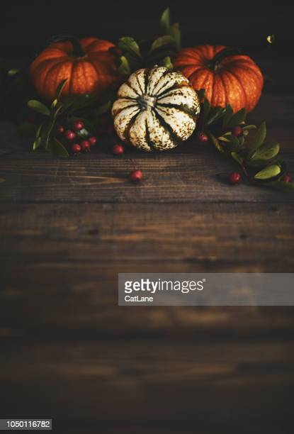 thanksgiving background with pumpkin variety and berries - thanksgiving background stock photos and pictures