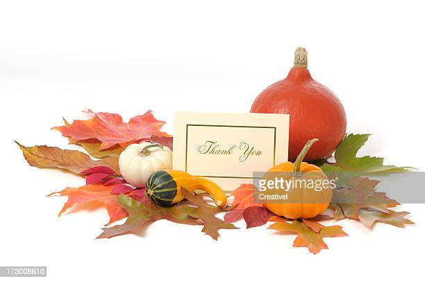 thanksgiving concept, card with autumn leaves and pumpkins - happy thanksgiving card stock pictures, royalty-free photos & images
