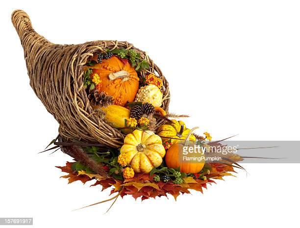 感謝祭コルヌコピア白で分離。 - 豊穣の角 ストックフォトと画像