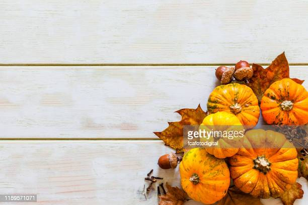 thanksgiving day or autumn gourds holiday background - thanksgiving wallpaper stock photos and pictures