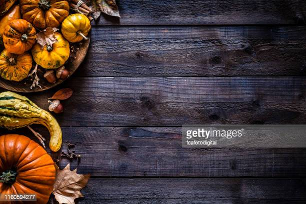 thanksgiving day or autumn pumpkin holiday background - fall background stock photos and pictures