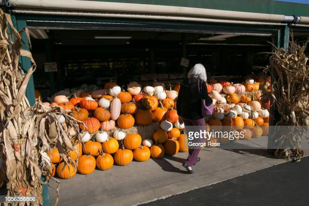 Thanksgiving display of colorful pumpkins are viewed at a local grocery store on October 11 near Healdsburg California A cool spring and mild summer...