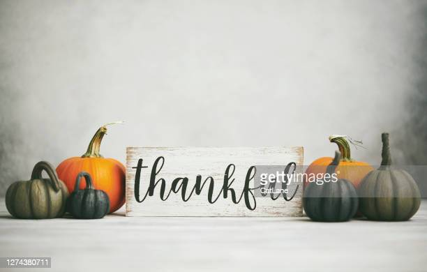 thanksgiving fall background with assortment of pumpkins and thankful sign - thanksgiving holiday stock pictures, royalty-free photos & images