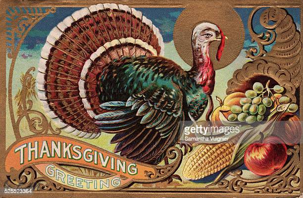 Thanksgiving Greeting Greeting Card with Turkey