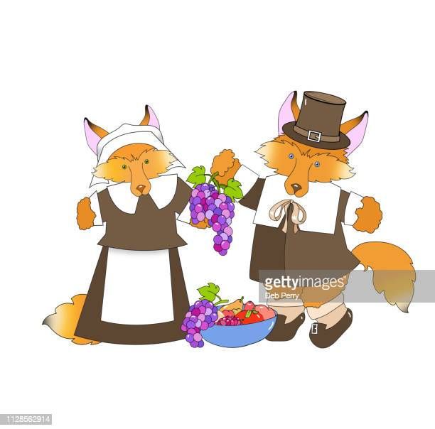 thanksgiving illustration of a fox couple dressed as pilgrims against a white background - cartoon thanksgiving stock photos and pictures