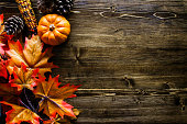 Thanksgiving Pumpkin Background