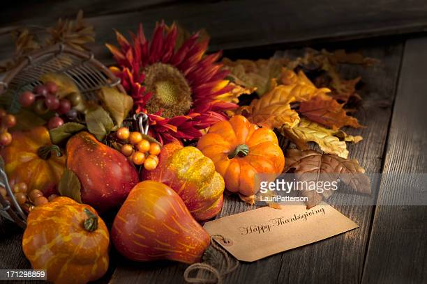 thanksgiving still life - happy thanksgiving card stock pictures, royalty-free photos & images