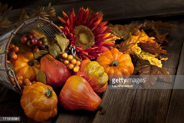感謝祭の静物 - 豊穣の角 ストックフォトと画像