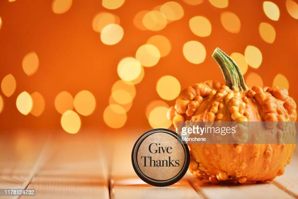 thanksgiving still life with pumpkins and greeting card on illuminated background and a rustic wooden table - happy thanksgiving card stock pictures, royalty-free photos & images