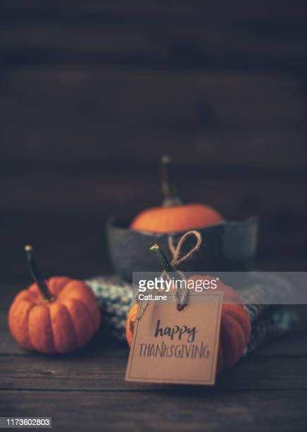 thanksgiving still life with pumpkins and holiday message - happy thanksgiving card stock pictures, royalty-free photos & images