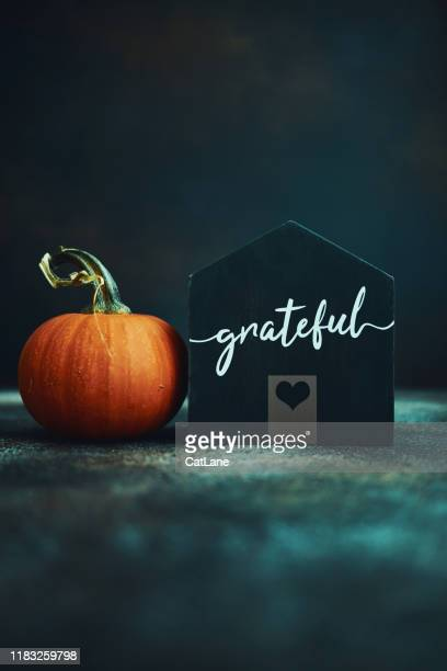 thanksgiving still life with wooden house and pumpkins - happy thanksgiving text stock pictures, royalty-free photos & images