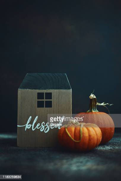 thanksgiving still life with wooden house and pumpkins - thanksgiving cat stock pictures, royalty-free photos & images