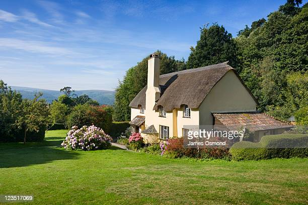 thatched cottage in selworthy. exmoor national park. somerset. england. uk. - somerset england stock pictures, royalty-free photos & images