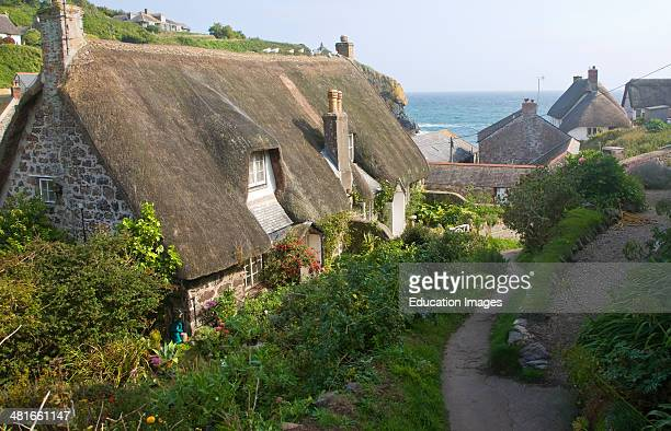 Thatched cottages in the historic and attractive fishing village of Cadgwith Cove on the Lizard Peninsula Cornwall England