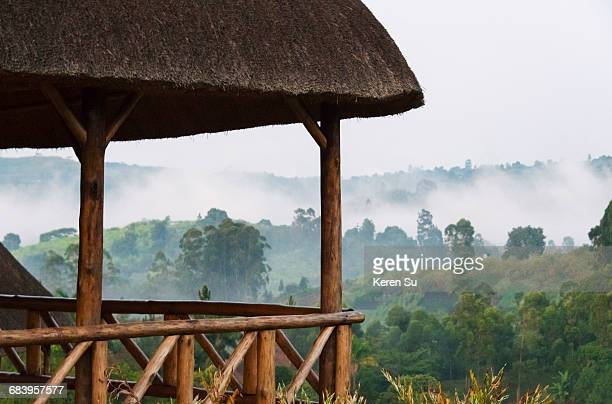 thatched house in the forest in morning mist - parque nacional fotografías e imágenes de stock