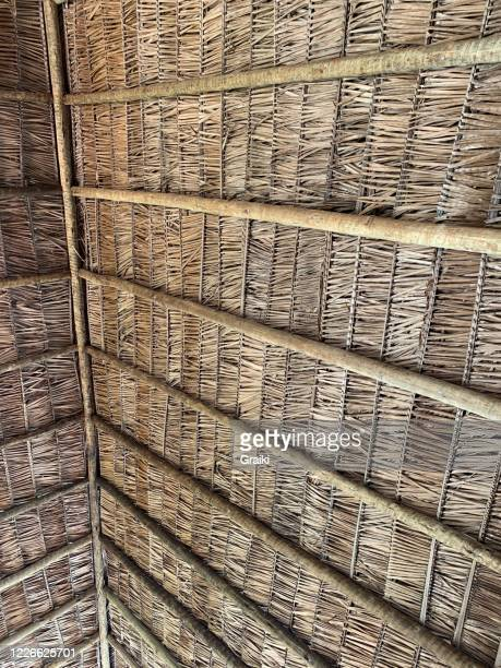 thatched roof - 中南米 ストックフォトと画像
