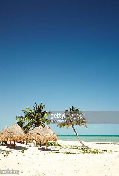 Thatched roof umbrellas on tropical beach