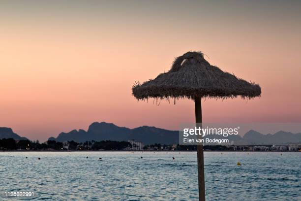 thatched umbrella at the beach of playa de muro at sunset - muro stock photos and pictures