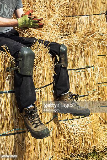 Thatcher wearing kneelers and protective gloves sitting on bundles of straw.