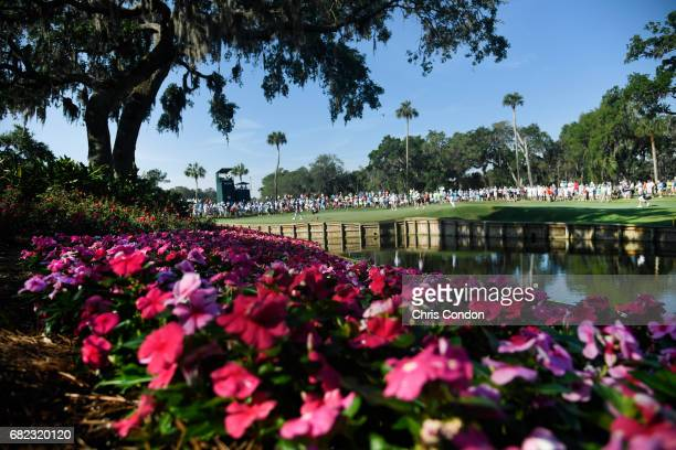The 13th hole during the second round of THE PLAYERS Championship on THE PLAYERS Stadium Course at TPC Sawgrass on May 12 in Ponte Vedra Beach