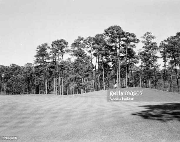 The 14th green during the 1956 Masters Tournament at Augusta National Golf Club in April 1956 in Augusta Georgia