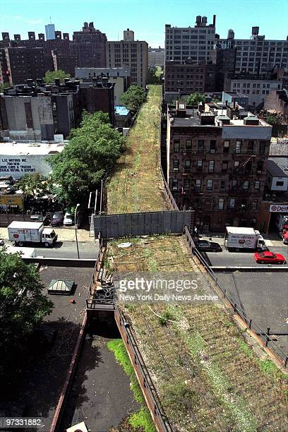 The 15mile High Line an abandoned elevated spur built 70 years ago to carry freight to Manhattan's West Side now covered with high grass wildflowers...