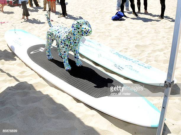 The 2009 Project Save Our Surf 1st Annual Surfathon and Oceana Awards at Ocean Park Beach on April 5 2009 in Santa Monica California