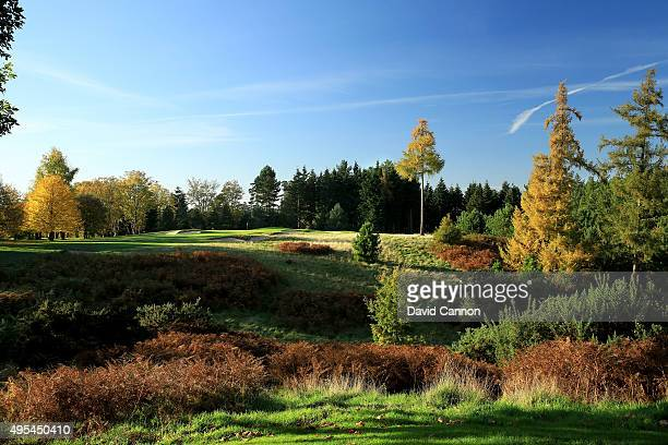 The 205 yards par 3 3rd hole at Bearwood Lakes Golf Club on October 31 2015 in Sindlesham Reading United Kingdom
