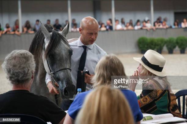 The 2nd Cracow Arabian Horse Show and Auction in the quotSzaryquot Equestrian Club in Michalowice near Krakow Poland on 10 JSeptember 2017