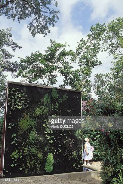 The 3Rd Gardens Festival At ChaumontSurLoire On July 1994 Garden Of 'Vegetable'S Walls' By Patrick Blanc France
