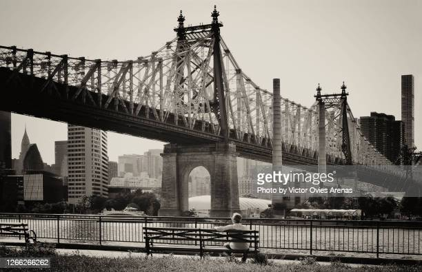 the 59th street bridge. man sitting on the 'manhattan bench' in sutton place park overlooking queensborough bridge. - black and white instant print stock pictures, royalty-free photos & images