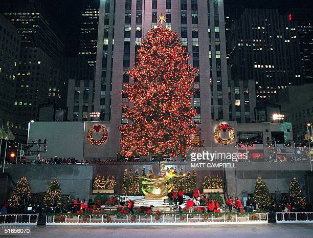 The 73foot Norway Spruce Rockefeller Christmas tree sits atop Rockefeller Plaza minutes after being lighted by US First Lady Hillary Clinton at the...
