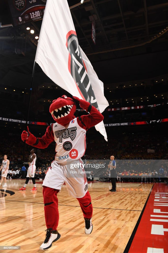 The 905 Raptor hyping up the crowd during the game against the Austin Spurs at the Air Canada Centre on March 13, 2017 in Toronto, Ontario, Canada.